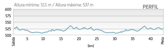altimetría maraton vitoria gasteiz martin fiz 2020